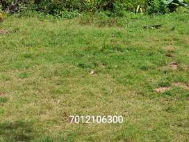 10 cents of land for sale in randamkutty