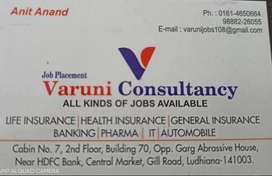 SR. Accountant
