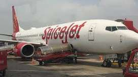 Airlines Job - spice jet Airlines Opened @ CCE , Cabin Crew, Luggage D