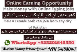 Home based typing job opportunity for students   Wisdom Mining Pvt