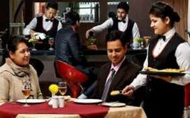 Lady staff required  in restaurant  waiters  and captians