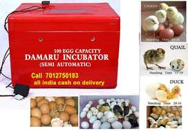 100 Egg Incubator hatching machine for poultry bird Cash on delivery