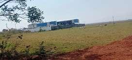 Kss mega housing project ,Pitapalli yellow zone