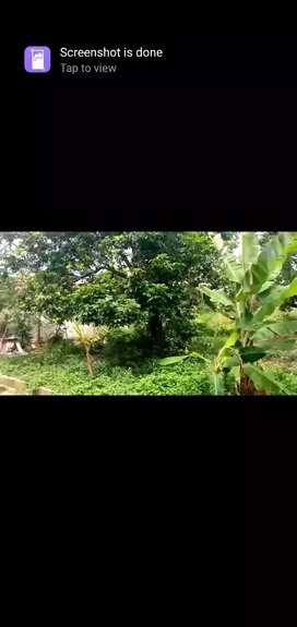 Tanah dikerjasamakan daerah pondok petir depok