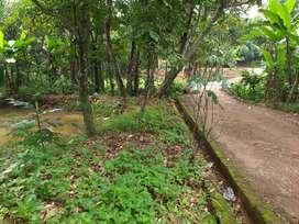 Dijual tanah 200m2 Pinggir Jalan Desa Waru - Cidokom Parung Bogor