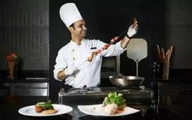 Wanted indian chef in our hotel