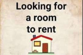 Looking for room/home/flat