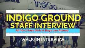 Indigo hiring new candidates. Direct joining in your nearest airport.