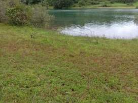ID 109/3 The 4 Acres Water Touch Land For Sale Near Panshet