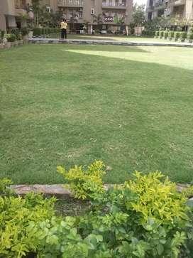Three bhk flat for sell in royal  residency Mahmoorganj vns