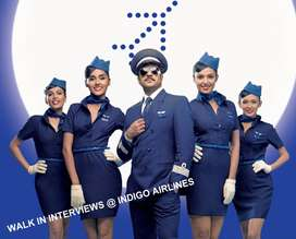 AIRPORT - AIRLINES JOBS APPLY IN INDIGO FAST  Airport jobs