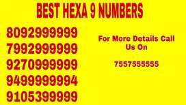 Golden vip mobile number