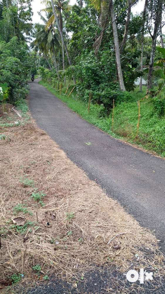 10 cents road facing land for at kumarakom near major tourism project