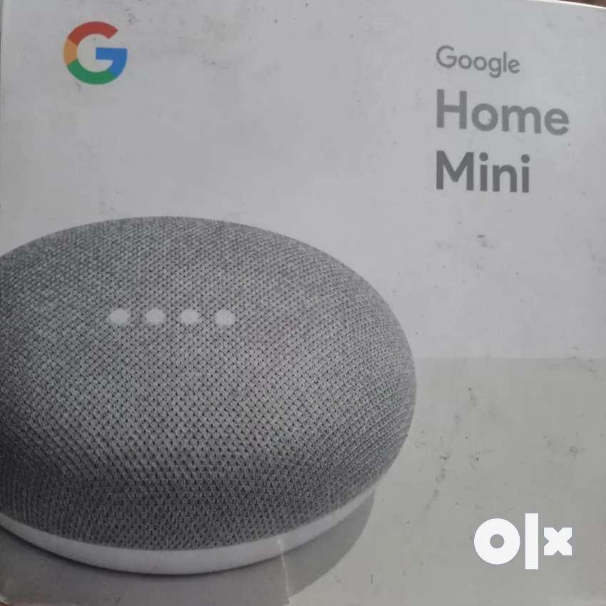 1 month old google mini