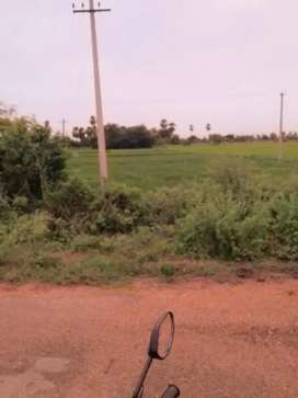1/2 Acer Agricultural Land for Farming/Investment