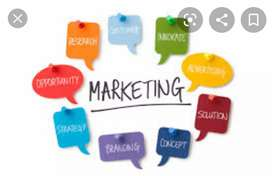 Marketing Executive Vacancies fresher's experience both can apply