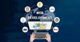 Web developer and Mobile app developer