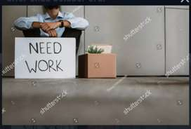 Job required in back office in private or govt.