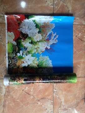 Wallpaper Aquarium Besar