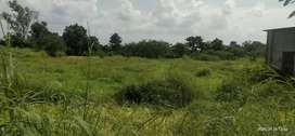 Titwala Green zone Plot for sell 50 Guntha
