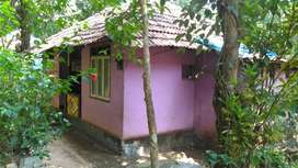 13 cent plot with house for sale 13KM away from Thodupuzha town