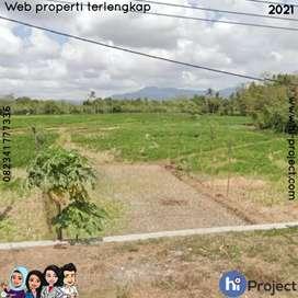 Dijual 810 M2 Tanah pinggir jalan Bypass BIL Lombok tengah T498