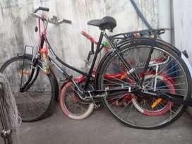 New Cycle i