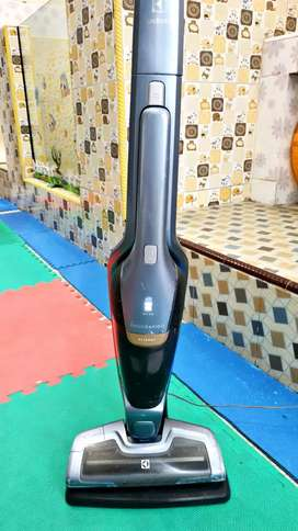 Vacum Cleaner Stick Electrolux Ergorapido