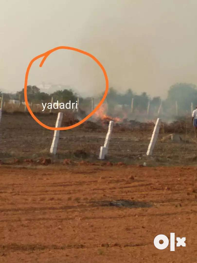 Farm plots for sale offer price (mallabar neem trees&benefits) 0