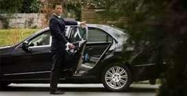 Driver/supir pribadi
