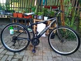 Sepeda gunung Phoenix fashion siap gowes