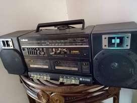 2 IN 1 SOUND SYSTEM