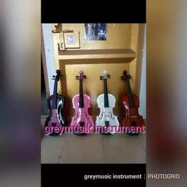 Violin greymusic seri 995