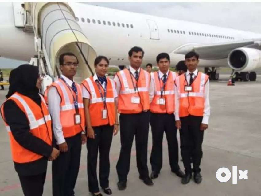 Jobs available in Airlines sector 0