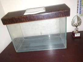 Fish tank of glass