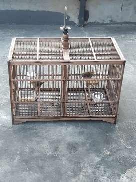 Burung Prendjak sepasang+kandang 150rb doang