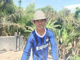 Angkut Bongkaran Gianyar Denpasar