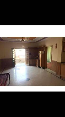 roommate required at tip top flat