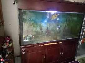 aquarium 1,8x2x70