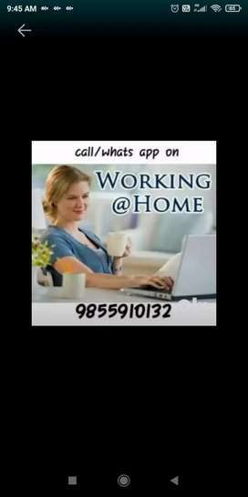 Fresher's,housewife and retired person all can join this job