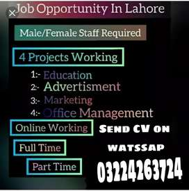 Jobs avalible for man/woman/students /and housewife