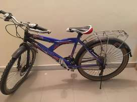 Dolphin River geared bicycle