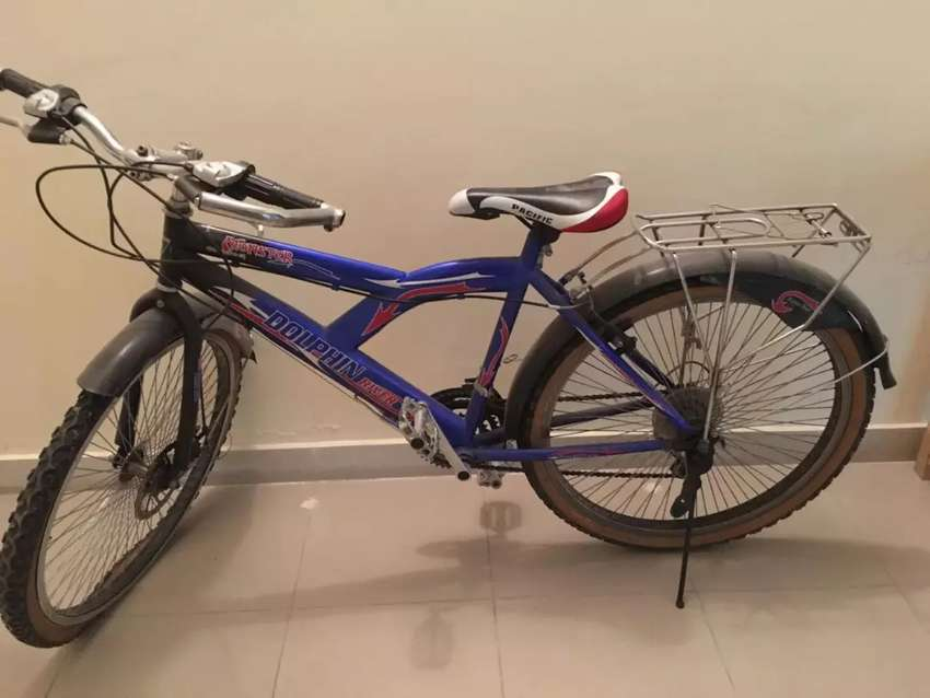 Dolphin River geared bicycle 0