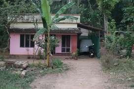 plot for sale near paipad reethu palli.