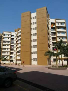Available 1bhk flat resale