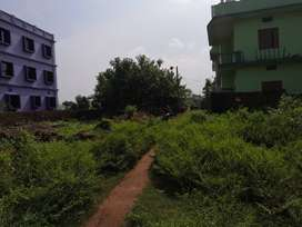 Gharabari plot
