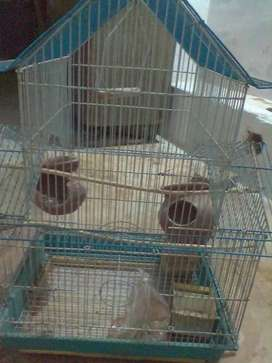 BIRDS CAGE, PERFECTLY GOOD CONDITION PRICE 1700 negotiable..