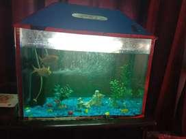 Aquarium with all accessories..