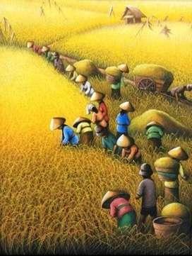 lukisan kanvas panen padi yang melimpah
