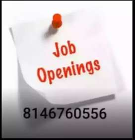 Urgent required back office candidate